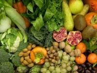 Festa dell'agricoltura 2017: modalità di partecipazione