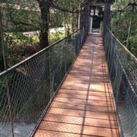 Ponte Briscola