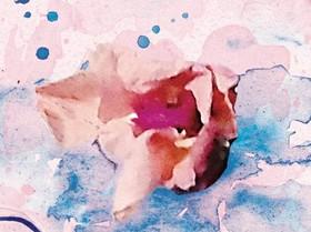 fiore.jpg